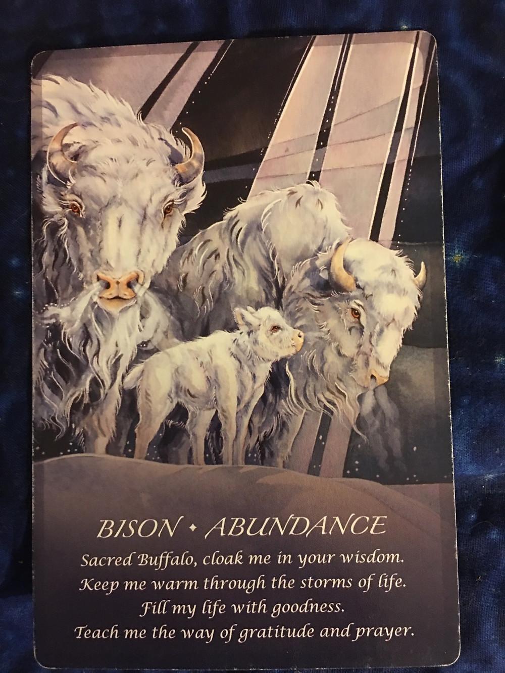 Spirit animal oracle card