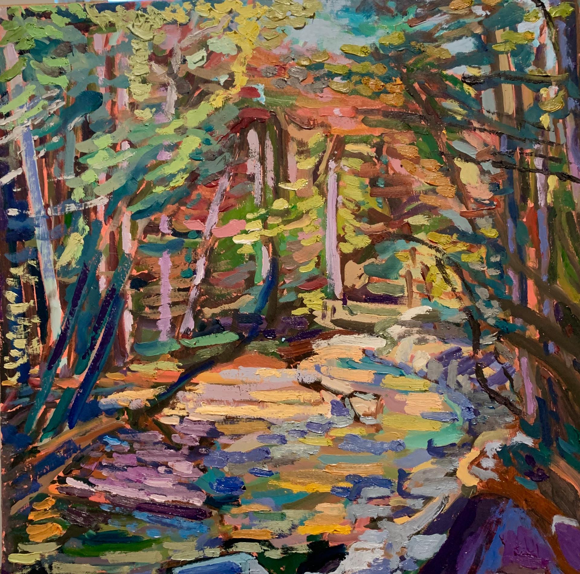 Scotts Run Creek