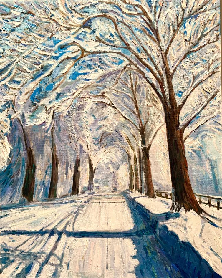 Winter in Vojvodina