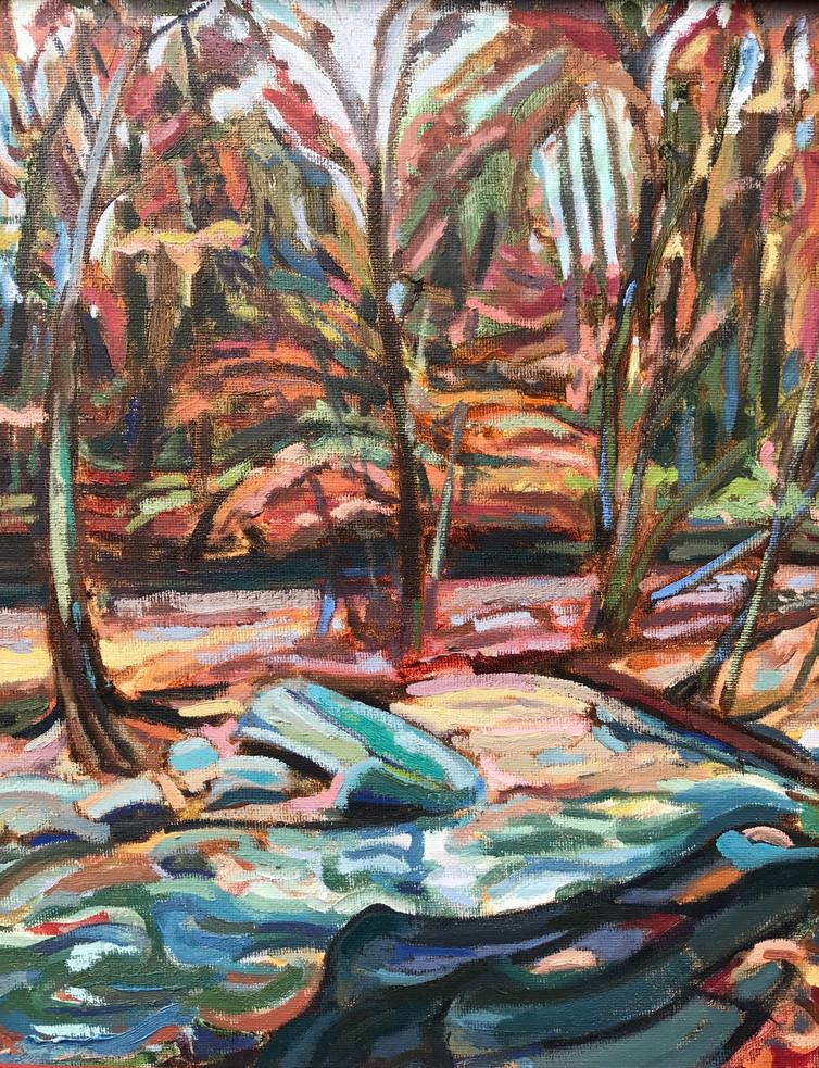 Scott Run Creek