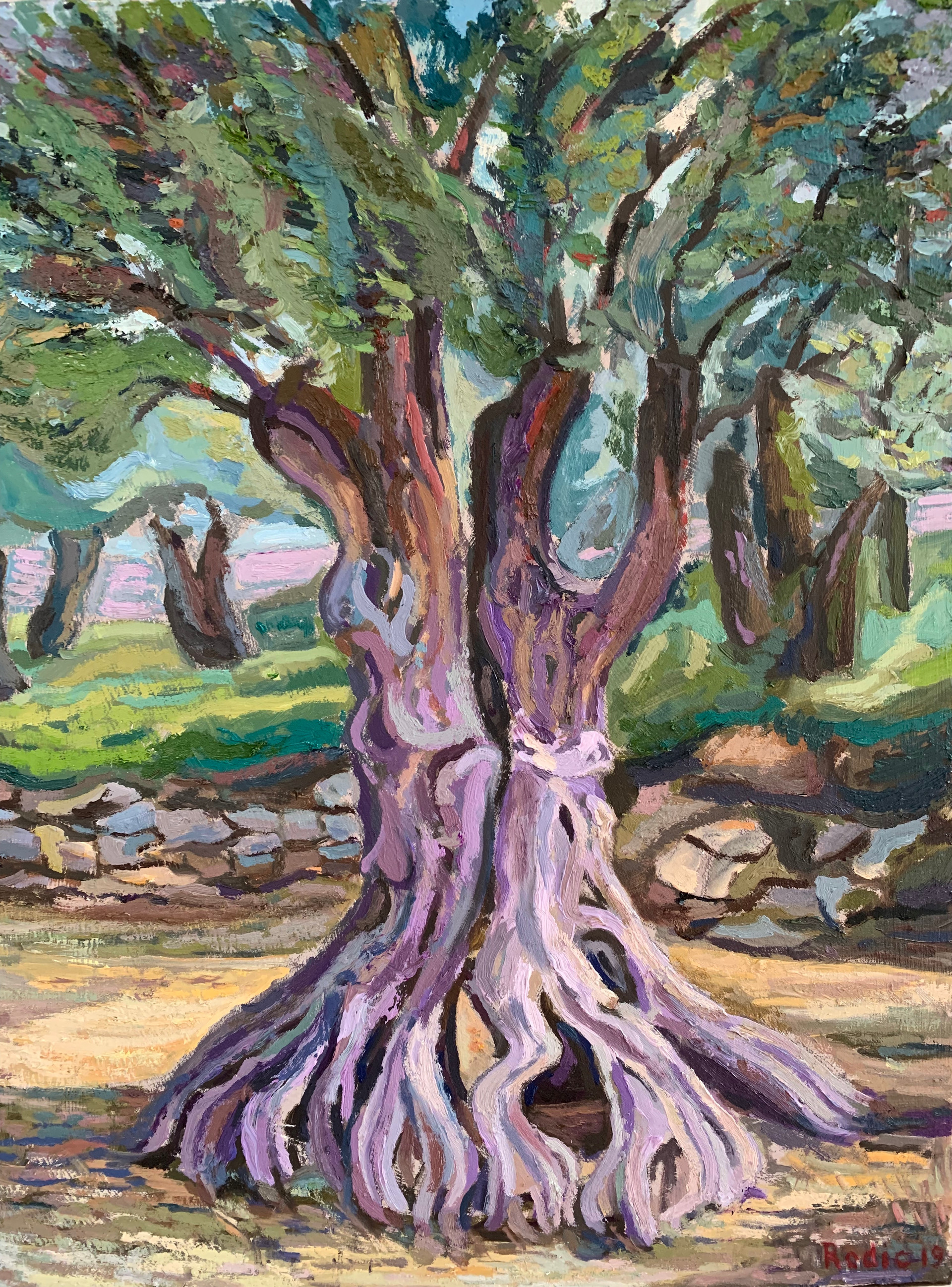 Old Olive Tree II