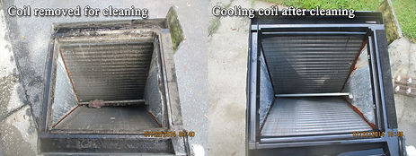 Coil Before & After.jpg