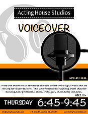 VoiceOver Flyer Type 02122020.jpg