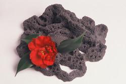 1998「植物の棲家(椿)」.JPG
