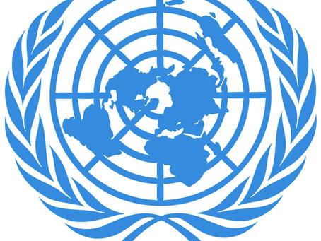 10 razones para implementar un Organismo Fiscal de la ONU