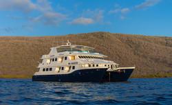 cormorant-cruise-8