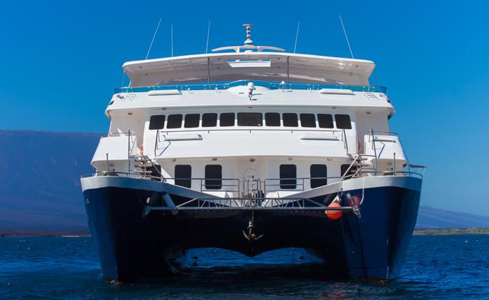 cormorant-cruise-12