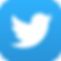 twitter signature logo