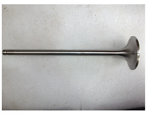WARTSILA L20 EXHAUST VALVE.PNG