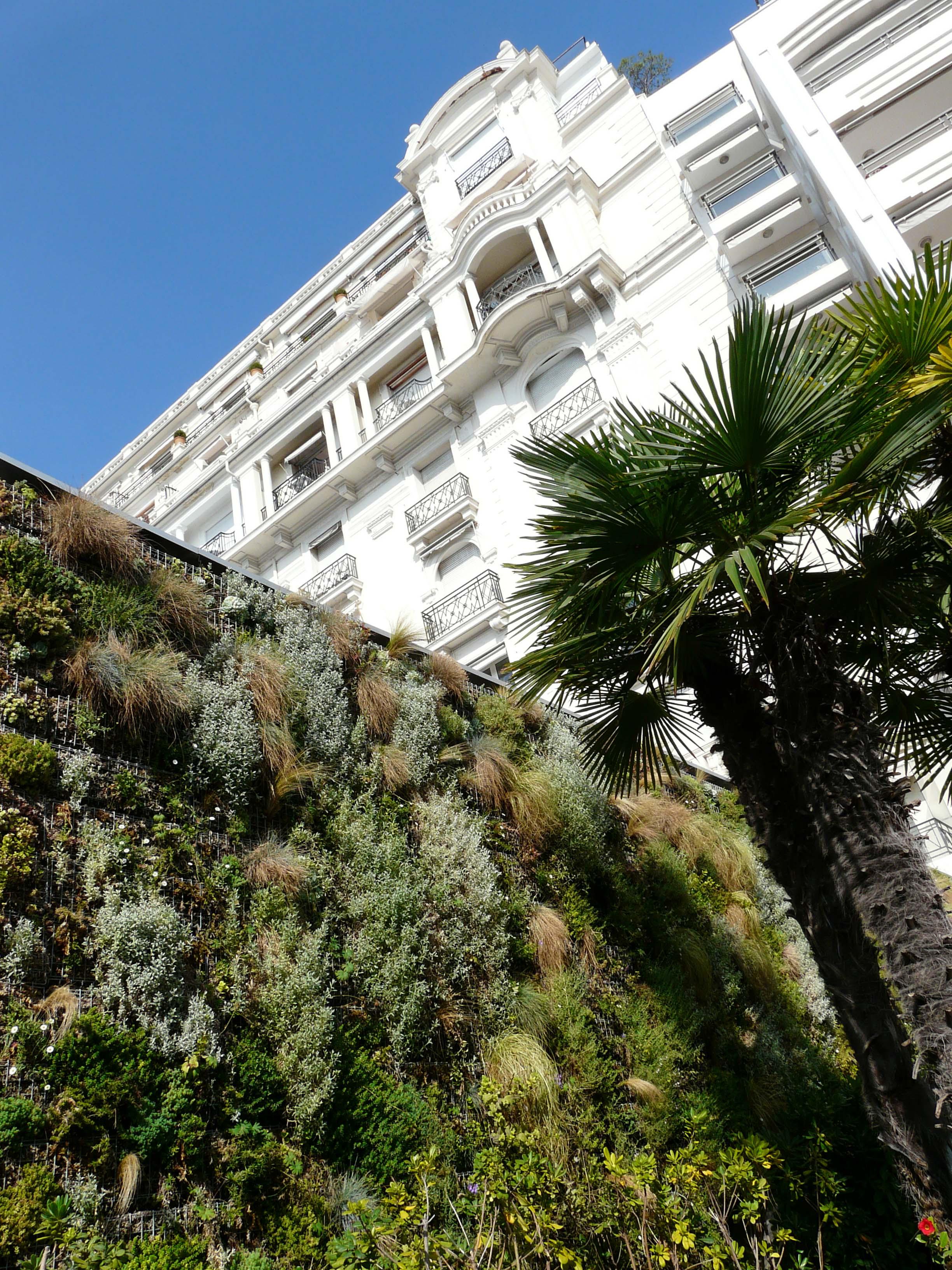 Cannes, La croisette 65