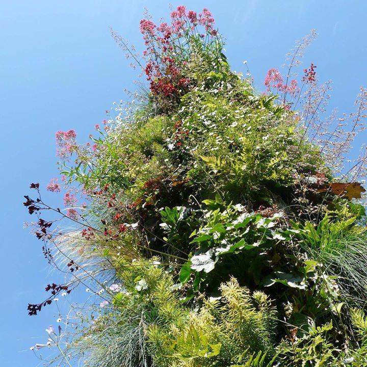 Le totem de la biodiversité aux Jardins de Paradis à Cordes-sur-Ciel_85 espèces et variété