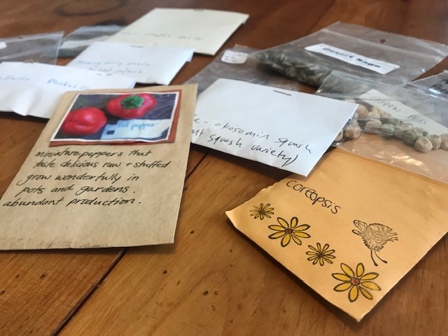 Seed delivery from Mystic Bookshop!