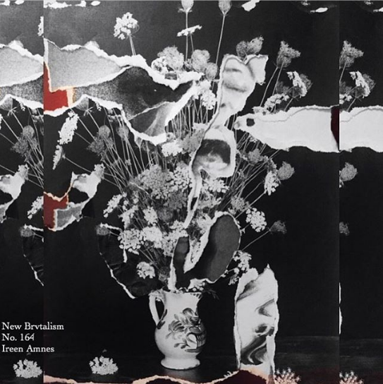 NEW BRUTALISM / IREEN AMNES - COVER ARTWORK
