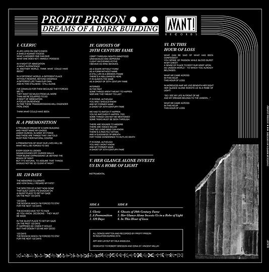 PROFIT PRISON VINYL COVER