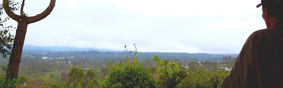 pemandangan alam dari villa hira