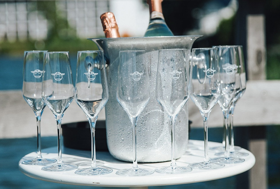 Glasses at cheap elopement wedding packages in Denmark