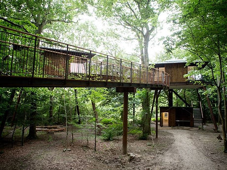 A luxurious treehouse in the middle of a protected park, perfect destination for your wedding abroad in Denmark.