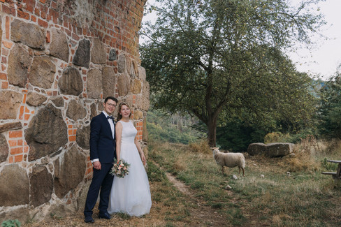 Newlyweds by the majestic Hammershus Ruins smiling as a sheep joins them during their elopement in Denmark.