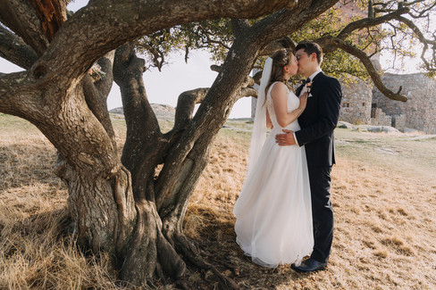 Newlyweds kissing under a tree at Hammershus Ruins on Bornholm Island while getting married in Denmark.