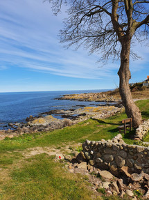 The-nature-of-the-Bornholm