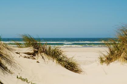 A typical sandy beach in Denmark on Lolland island.