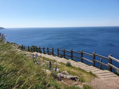 the coastal line close to Hammershus ruin on Bornholm island