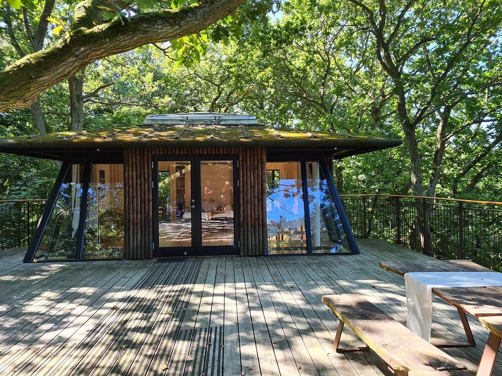 The tree-house hut for newlywed couples, a part of the all-inclusive wedding package for two for their adventure wedding in Denmark.
