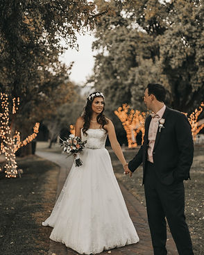 Newlyweds holding in hands and walking in the park as they have their adventure elopement.