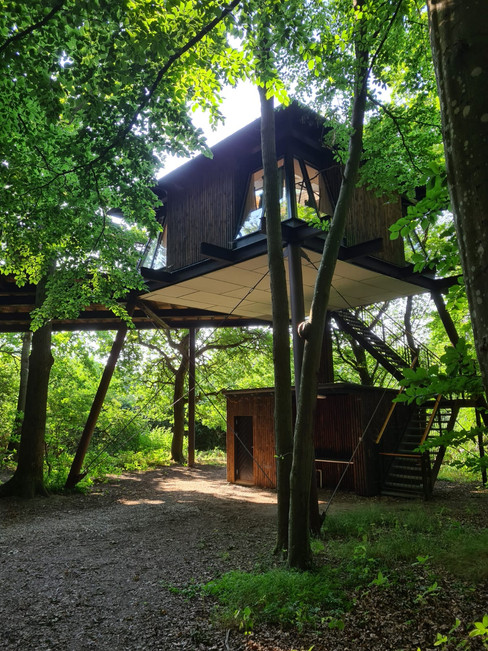 A view of the treehouse where couples can have their forest elopement after their Nordic wedding abroad.