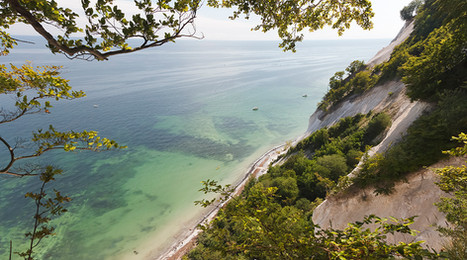 A view of the sea from the top of Møns Klint, a romantic destination for your elopement abroad to Denmark.