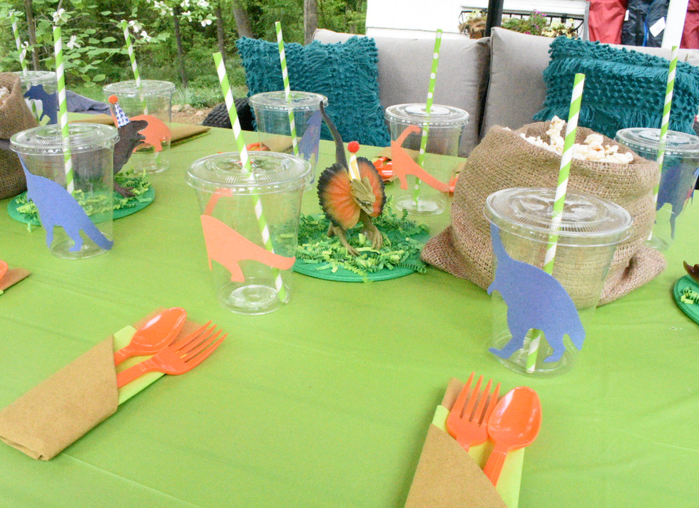 Dino-mite table:  Dinosaur watermelon carving & fresh fruit  Chocolate vulcano mini cakes Popcorn Dino footprint cookies Jelly Chocolate eggs  Dino eggs cake pops Dinosaur decorations Beverages tubs and side stand