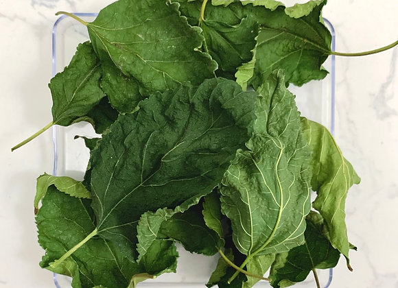 Organic Mulberry Leaves