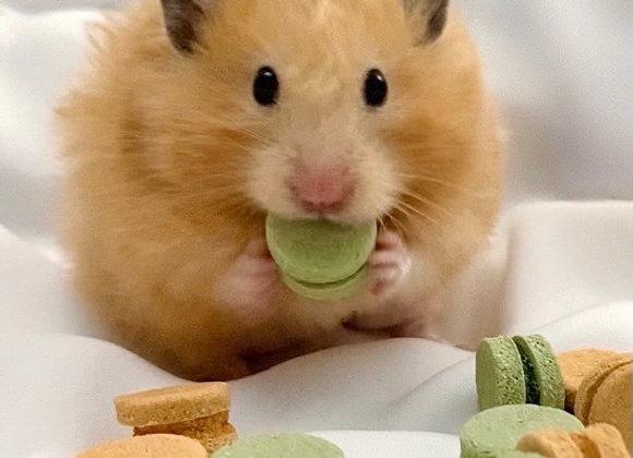 Taffy's x The Piggles Mini Macarons