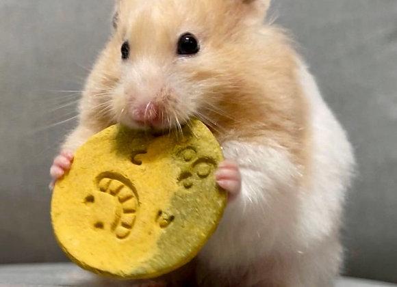 Pumpkin Celery Crackers