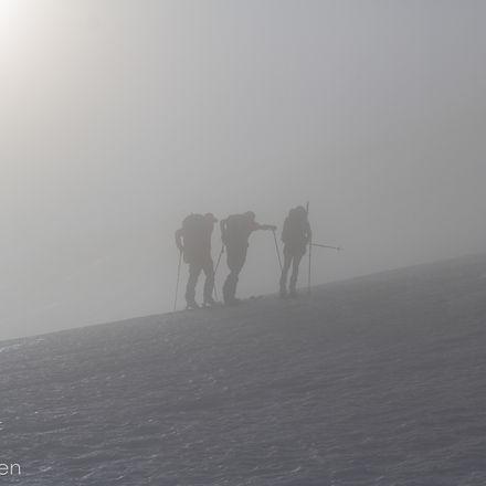 In The Fog_edited.jpg