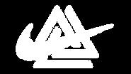 ALLWhite NikeSS Logo.PNG