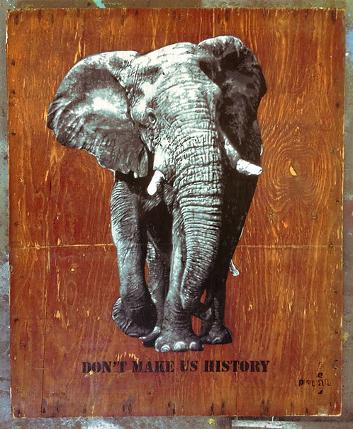 Don't make us History - Elephant