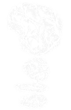 NBR_FINAL_ICON_(White-Transparency).png