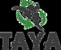 Logo Taya.png