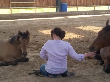 Angst beim #Reiten oder vor dem eigenen #Pferd