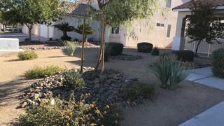ARE-Landscape-Sample-Closeup (1).jpg