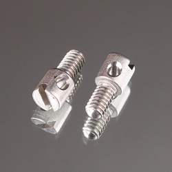 Special Slotted Drilled Fillister