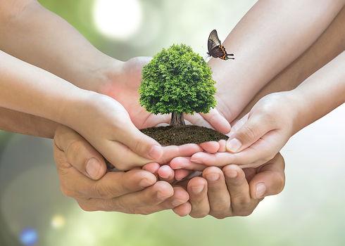 Mãos_segurando_o_planeta_com_borboleta.j