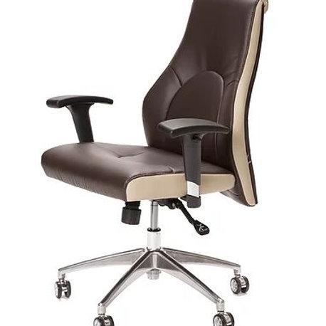 Luxury Customer Chair-TS