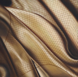 #9 Fetish in Sepia with Net, 2009