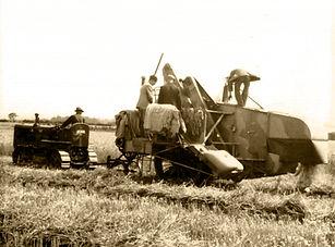 1936 hay cart.jpg