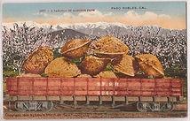 almonds in train.jpg