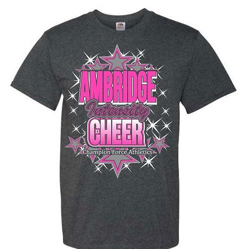 Ambridge Intensity Cheer Tees