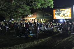 Starry Night Cinema Sugarworld
