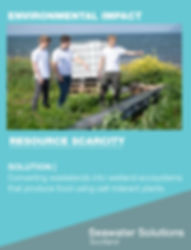 I4G Changemaker 2020 _ Seawater Solution